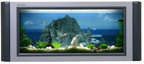 aquarium oder tv. Black Bedroom Furniture Sets. Home Design Ideas